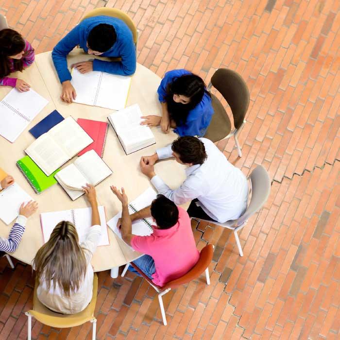 מערך סיוע לסטודנט